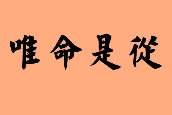 狼性执行力的1个中心、2个基本点、3个支柱、4项基本项原则