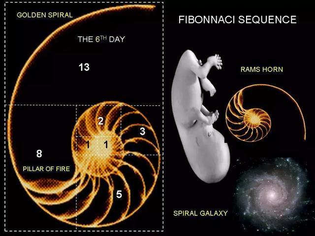 神圣几何的秘密 能量、频率、意识的进化,通向源头的路标!