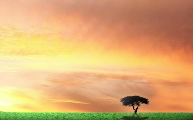 一个人,越喜欢独处,越有三个福报,人生会越来越顺!